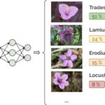 Biodiversity applications
